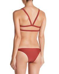 Mikoh Swimwear - Multicolor Honolulu Triangle Bikini Top - Lyst