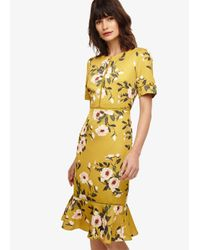 Phase Eight - Yellow Chartreuse Hilary Floral Dress - Lyst