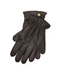 Polo Ralph Lauren - Brown Perforated Leather Gloves for Men - Lyst