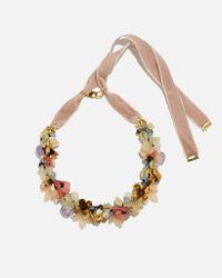 Lizzie Fortunato | Metallic Velvet Garden Necklace | Lyst