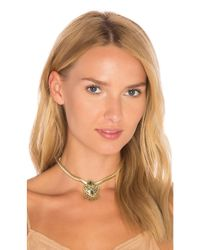 House of Harlow 1960 | Multicolor Montezuma Choker | Lyst