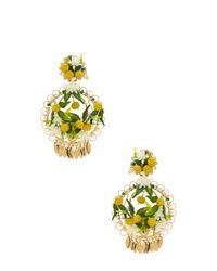 Mercedes Salazar - Yellow Fiesta Lemon Earrings - Lyst