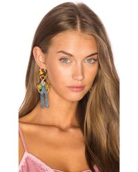 Elizabeth Cole - Blue Chiquita Statement Earrings - Lyst