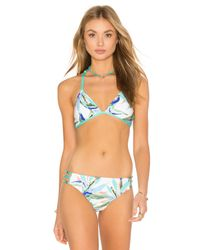 Ella Moss | Multicolor Birds Of Paradise Bralette Bikini Top | Lyst