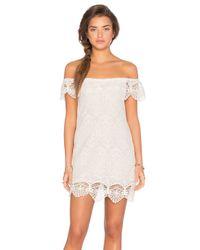 Nightcap | White Seashell Lace Off Shoulder Dress | Lyst