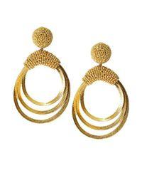 Sachin & Babi - Metallic Lulu Hoops - Gold - Lyst