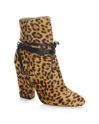 Sergio Rossi - Brown Hiandra Leopard-print Calf Hair Booties - Lyst
