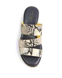 Cole Haan   Multicolor Allesa Grand Snake-print Leather Cork Wedge Slides   Lyst