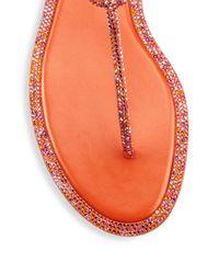 Rene Caovilla - Orange Strass T-strap Sandals - Lyst