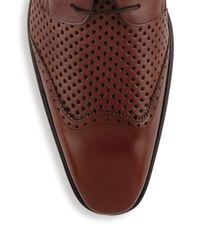 Mezlan - Brown Perforated Wingtip Oxfords for Men - Lyst