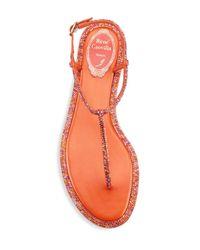 Rene Caovilla - Women's Strass T-strap Sandals - Orange - Size 39 (9) - Lyst