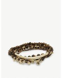 Kendra Scott - Metallic Supak 14ct Gold-plated And Tigers Eye Beaded Bracelet - Lyst