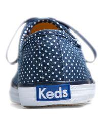 Keds | Blue Champion Micro Dot | Lyst
