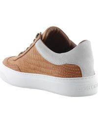 Jimmy Choo - Brown Ace Croc-print Nubuck Low-top Sneaker for Men - Lyst