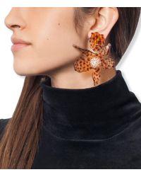 Lele Sadoughi - Multicolor Tortoise 'lily' Crystal Earrings - Lyst