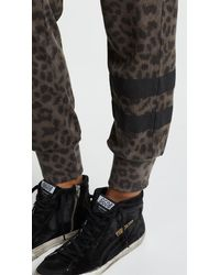 Sundry - Black Cheetah Jogger Pants - Lyst