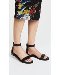Yosi Samra - Black Cambelle Ii Sandals - Lyst