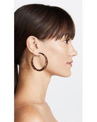 Kenneth Jay Lane - Brown Large Hoop Earrings - Lyst