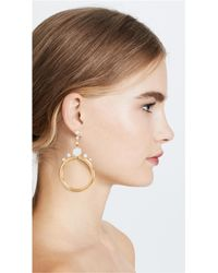 Elizabeth Cole - Metallic Imitation Pearl Hoop Earrings - Lyst