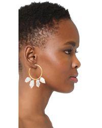 Lizzie Fortunato | Metallic Keshi Cool Hoop Earrings | Lyst