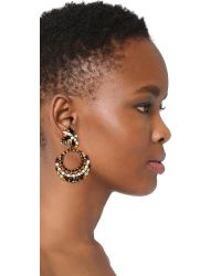 Erickson Beamon | Multicolor Imitation Pearl Safari Hoop Earrings | Lyst
