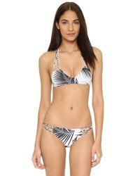 Mikoh Swimwear - Gray Lanai Bikini Bottoms - Lyst