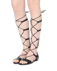 MICHAEL Michael Kors - Black Sofia Gladiator Sandals - Lyst