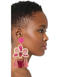 Mercedes Salazar - Pink Orquidea Rosa Clip On Earrings - Lyst