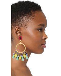 Elizabeth Cole - Multicolor Pippa Earrings - Lyst
