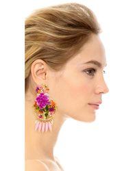 Mercedes Salazar - Pink Rosita Mora Clip On Earrings - Lyst