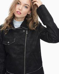 Splendid - Black Bonded French Terry Biker Jacket - Lyst