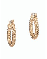 Talbots | Metallic Rope-knot Hoop Earrings | Lyst