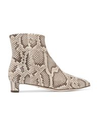 Dolce & Gabbana | Multicolor Python Ankle Boots | Lyst