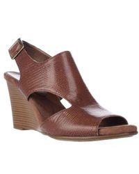 Aerosoles   Brown Honey Blossom Comfort Wedge Sandals   Lyst