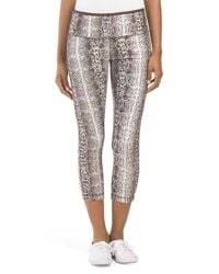 Tj Maxx - Multicolor Animal Print Capri - Lyst