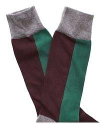 Corgi - Color Block Socks In Maroon/green for Men - Lyst