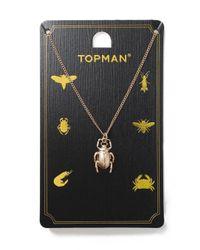 Topman - Metallic Gold Beetle Necklace for Men - Lyst