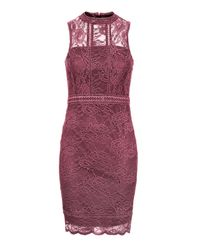 TOPSHOP | Pink Petite Scallop Lace Bodycon Dress | Lyst