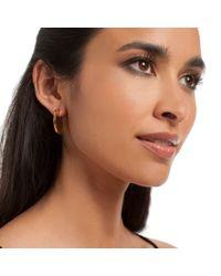 Trina Turk - Metallic Flat Circle Hoop Earring - Lyst