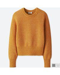 Uniqlo - Orange Women U Cotton Crewneck Cropped Sweater - Lyst