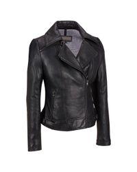 Wilsons Leather - Black Plus Size Zipper Collar Lamb Cycle Jacket - Lyst