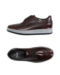 Fabi Sport - Brown Low-tops & Sneakers for Men - Lyst