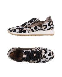 Primabase | White Low-tops & Sneakers | Lyst