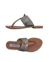 Steve Madden | Natural Toe Post Sandal | Lyst
