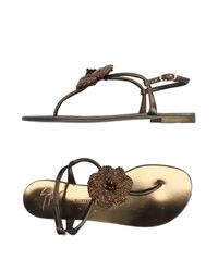 Giuseppe Zanotti - Brown Toe Post Sandal - Lyst