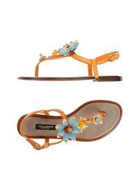Dolce & Gabbana - Orange Toe Post Sandal - Lyst