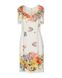 Dolce & Gabbana | White Lemon Print Dress | Lyst
