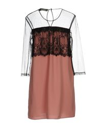 Twin Set - Brown Short Dress - Lyst