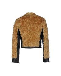 Virginia Bizzi Collection Privee - Brown Jacket - Lyst