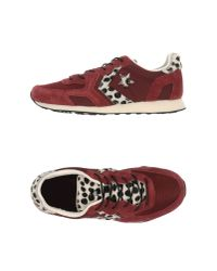 Converse - Purple Low-tops & Sneakers - Lyst